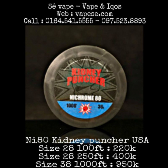 Ni80 Kidney Puncher Coil USA